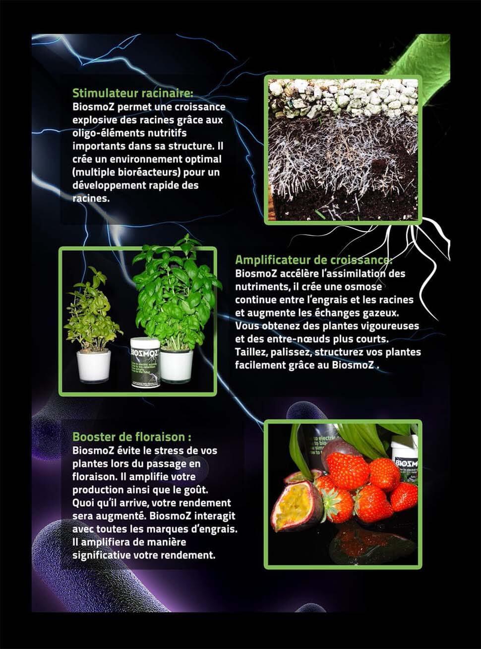 effets booster de biosmoz en image